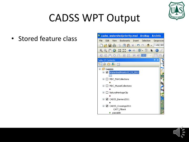 CADSS WPT Output