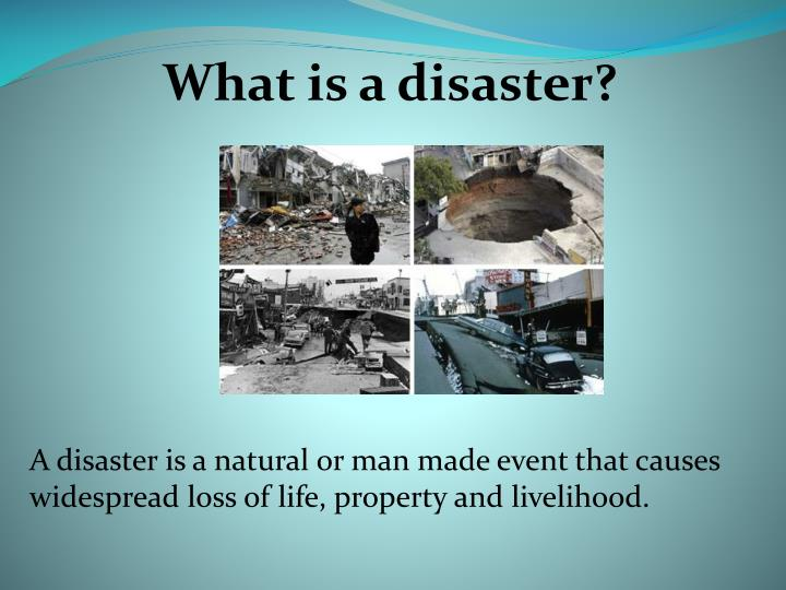 Essay On Man Made Disasters And Natural Calamities  Business Plan To Buy A Hotel also Essays On Science  Study Help