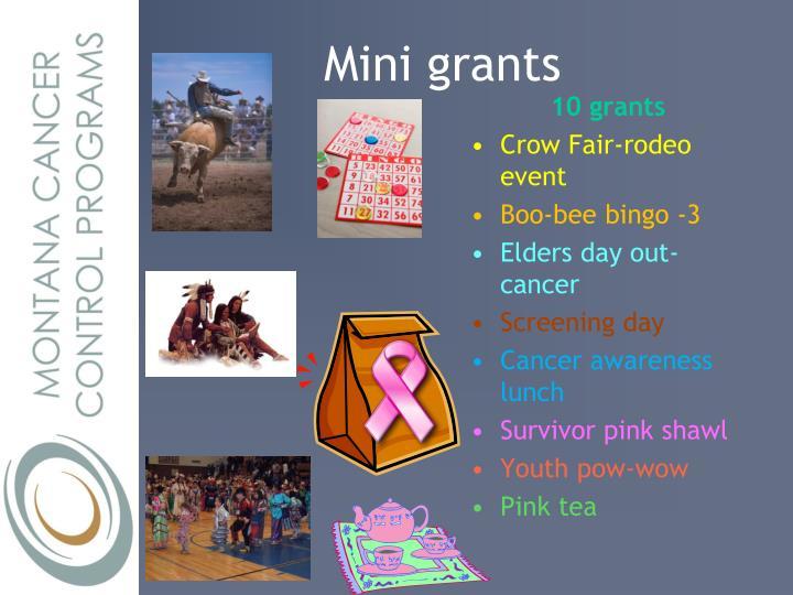 Mini grants