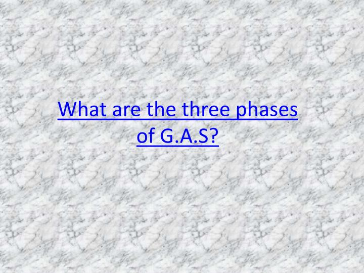 What are the three phases of G.A.S?