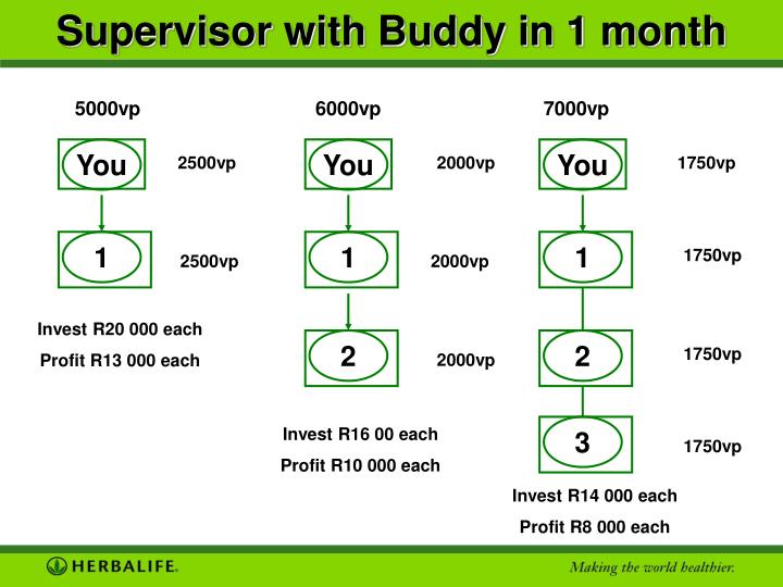 Supervisor with Buddy in 1 month