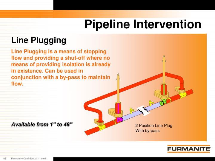 2 Position Line Plug