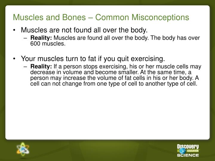 Muscles and Bones – Common Misconceptions