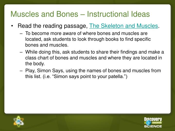 Muscles and Bones – Instructional Ideas