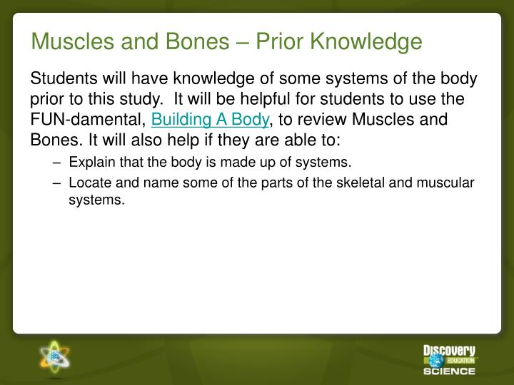 Muscles and Bones – Prior Knowledge