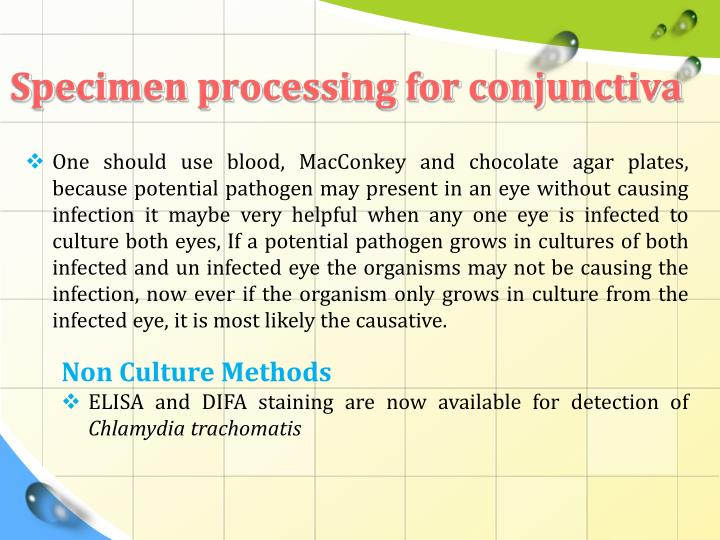 Specimen processing for conjunctiva