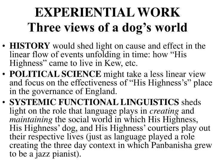 EXPERIENTIAL WORK