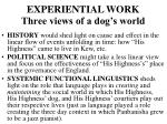 experiential work three views of a dog s world
