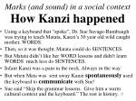 marks and sound in a social context how kanzi happened