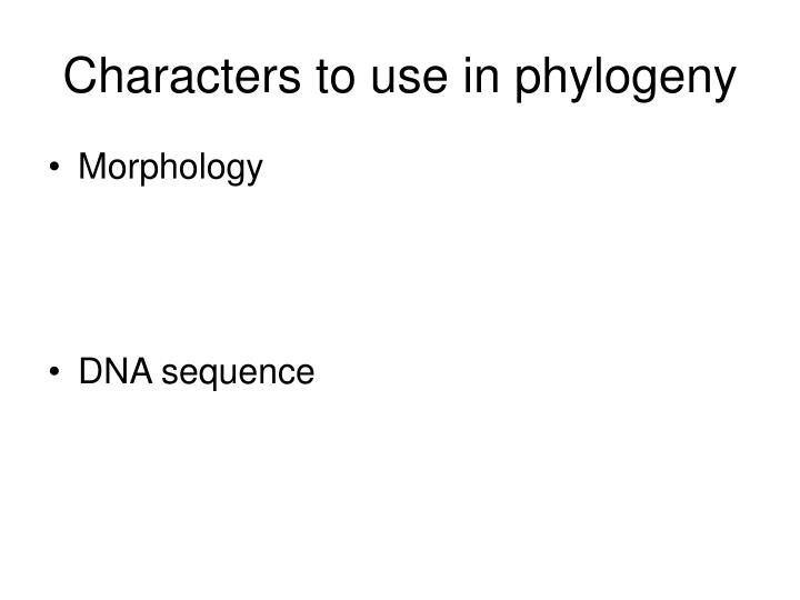 Characters to use in phylogeny