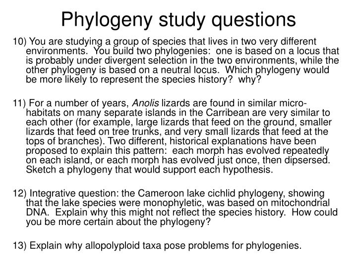 Phylogeny study questions