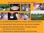 non pesticide management npm