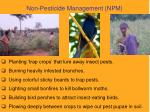 non pesticide management npm1