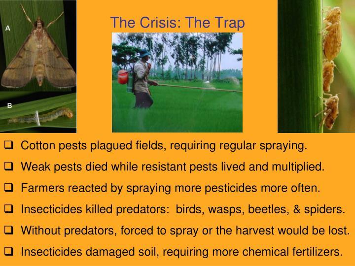 The Crisis: The Trap