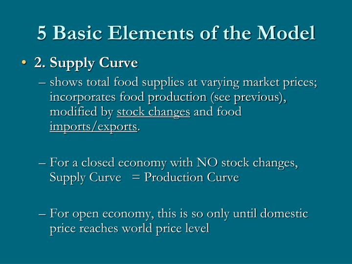 5 Basic Elements of the Model
