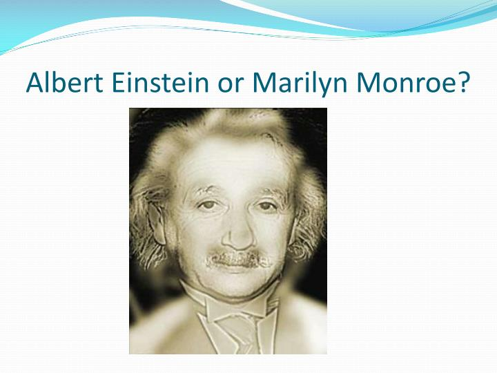 Albert Einstein or Marilyn Monroe?