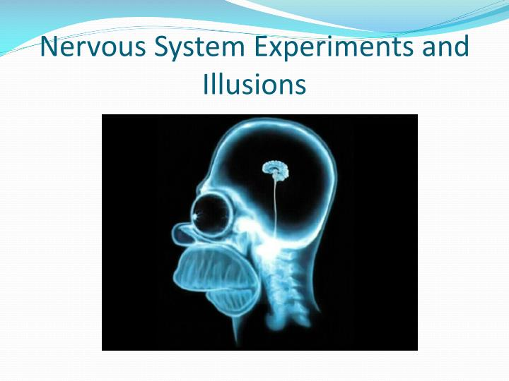 Nervous System Experiments and Illusions