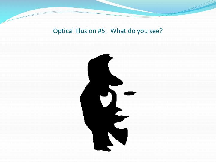 Optical Illusion #5:  What do you see?
