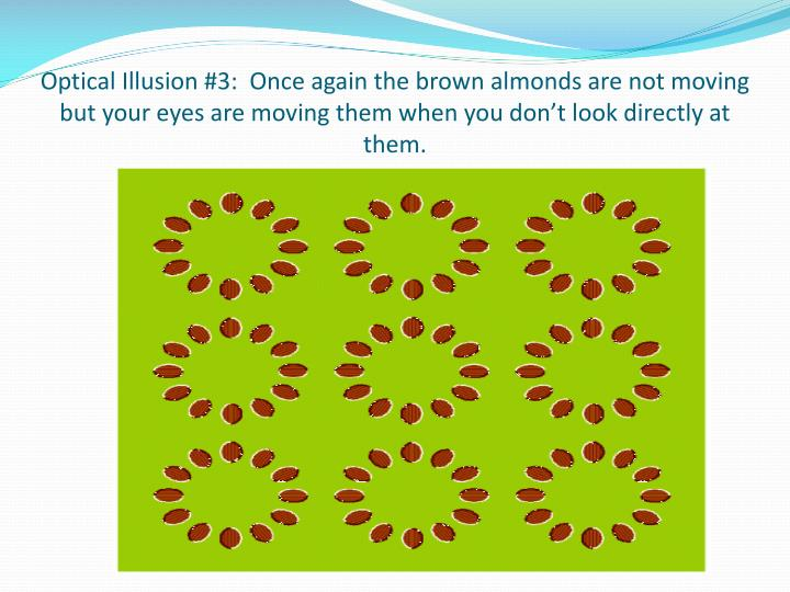 Optical Illusion #3:  Once again the brown almonds are not moving but your eyes are moving them when you don't look directly at them.