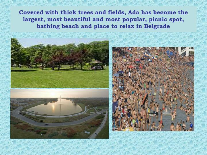 Covered with thick trees and fields, Ada has become the largest, most beautiful and most popular, pi...