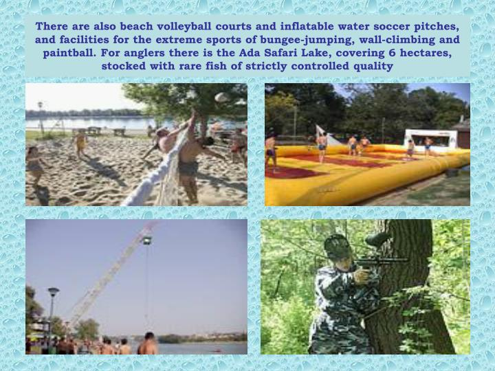 There are also beach volleyball courts and inflatable water soccer pitches, and facilities for the extreme sports of bungee-jumping, wall-climbing and paintball. For anglers there is the Ada Safari Lake, covering 6 hectares, stocked with rare fish of strictly controlled quality