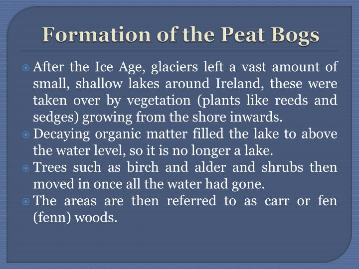 Formation of the Peat Bogs