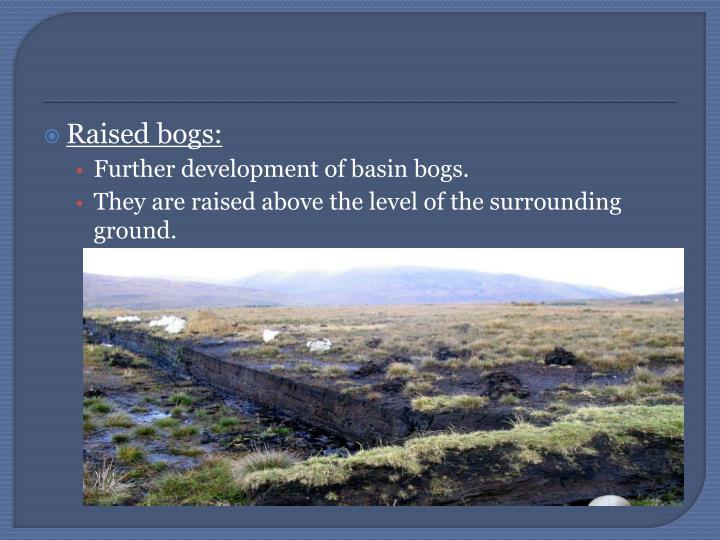 Raised bogs: