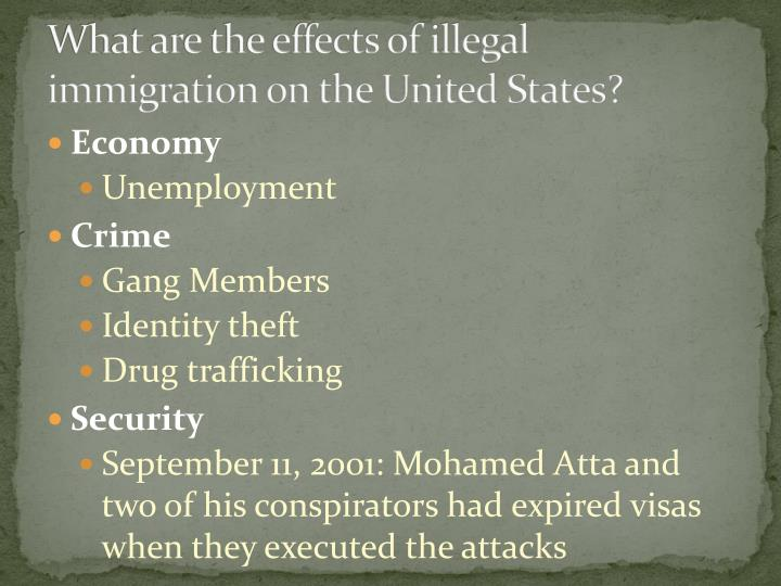 What are the effects of illegal immigration on the United States?