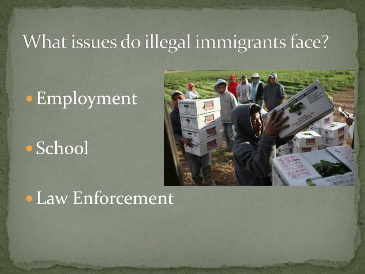 What issues do illegal immigrants face?