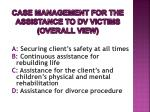 case management for the assistance to dv victims overall view