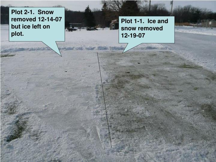 Plot 2-1.  Snow removed 12-14-07 but ice left on plot.