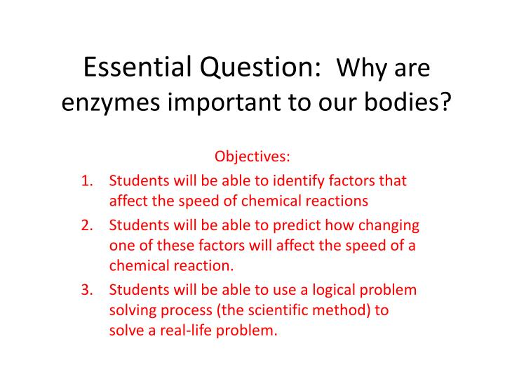 Essential question why are enzymes important to our bodies