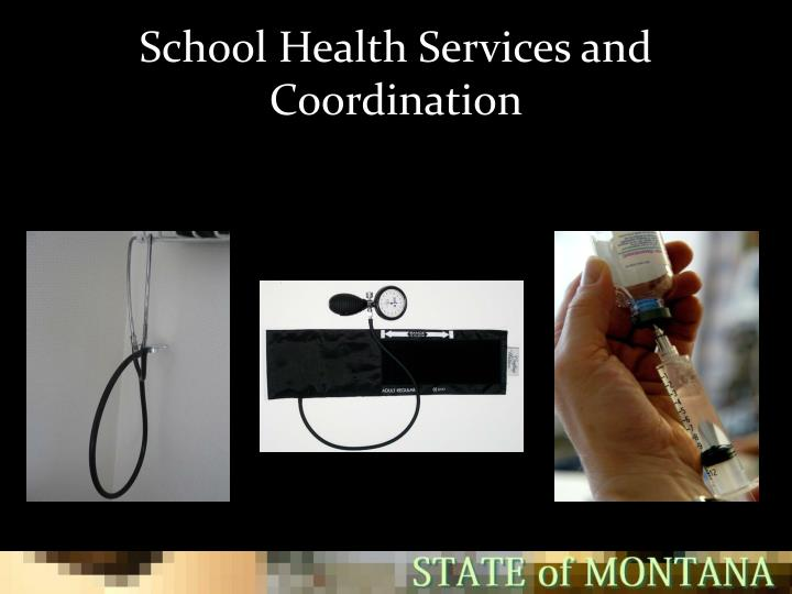 School health services and coordination