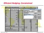efficient hedging constrained
