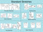 standard stretches