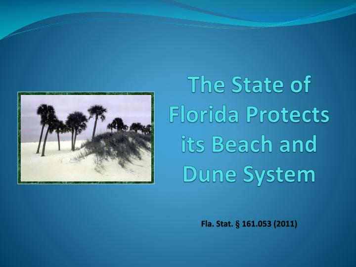 The state of florida protects its beach and dune system fla stat 161 053 2011