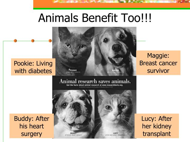 Animals Benefit Too!!!