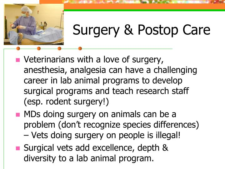 Surgery & Postop Care