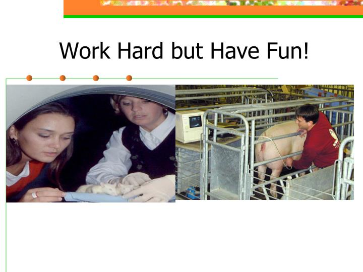Work Hard but Have Fun!