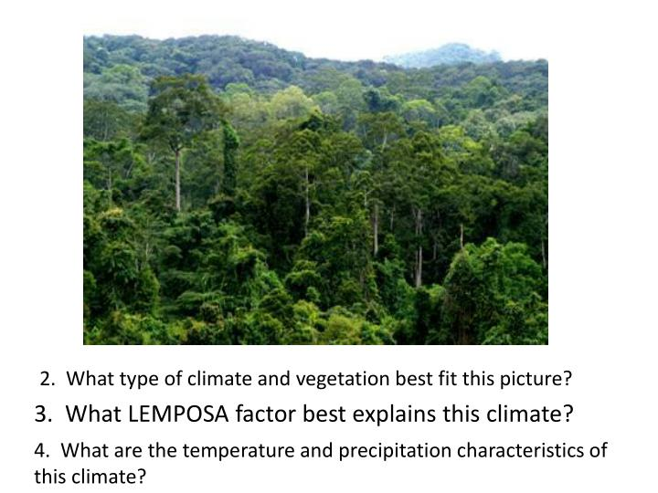 2.  What type of climate and vegetation best fit this picture?