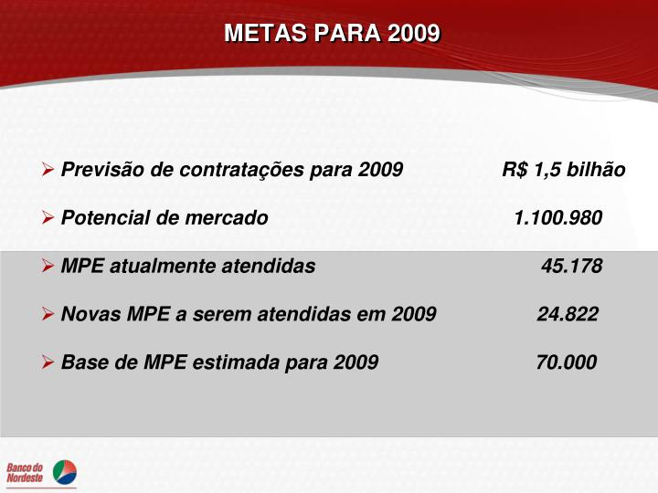 METAS PARA 2009