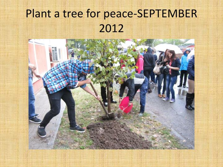 Plant a tree for peace-SEPTEMBER 2012