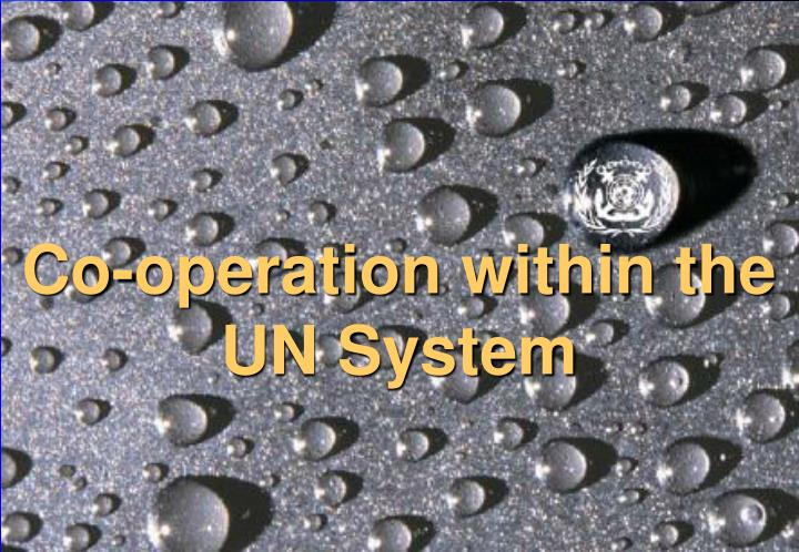 Co-operation within the  UN System