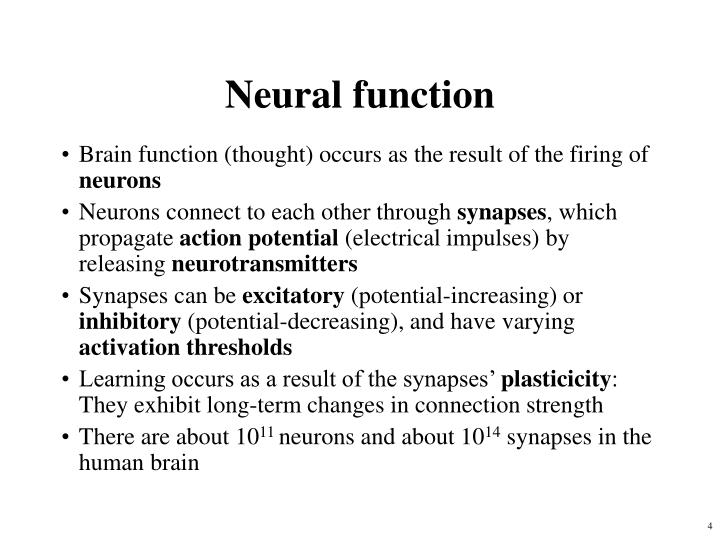 Neural function