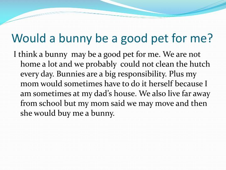 Would a bunny be a good pet for me?