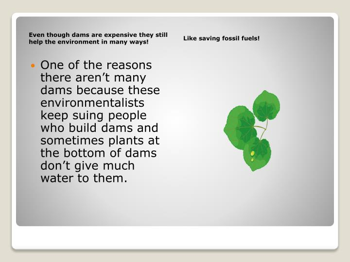 Even though dams are expensive they still help the environment in many ways!