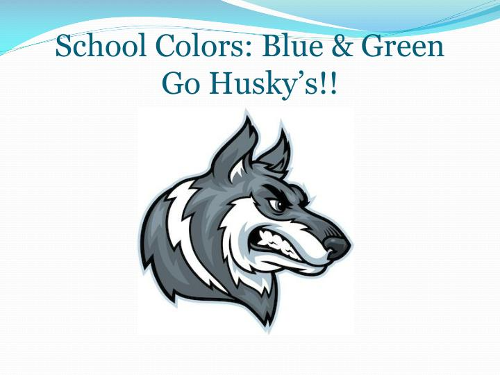 School colors blue green go husky s