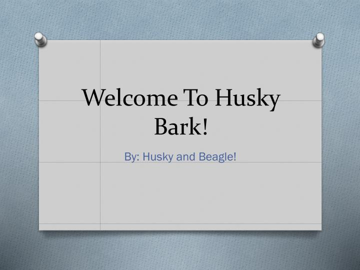Welcome to husky bark