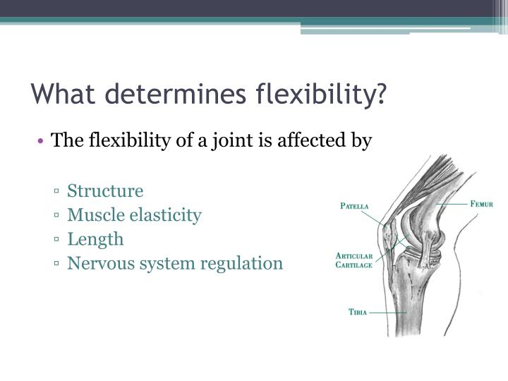 What determines flexibility?