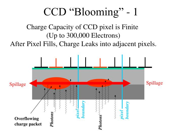 """CCD """"Blooming"""" - 1"""